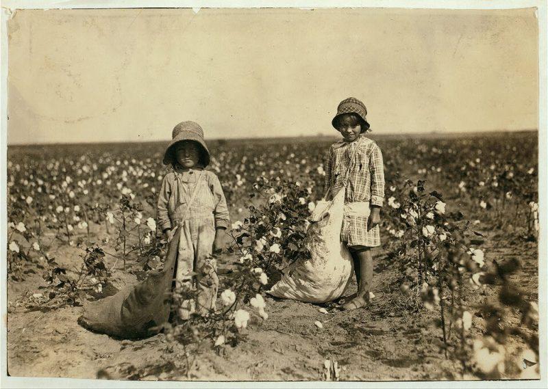 Gioiello e Harold Walker, 6 e 5 anni, prendere 20 a 25 libbre di cotone al giorno