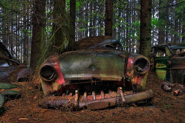 chatillon-car-graveyard-abandoned-cars-cemetery-belgium-7
