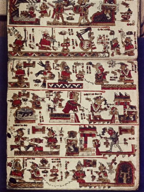 The Selden Codex Photo Credit