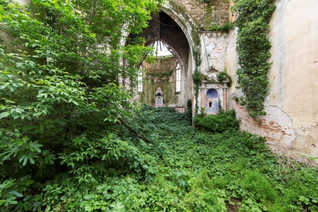 Beautiful abandoned place eaten by nature