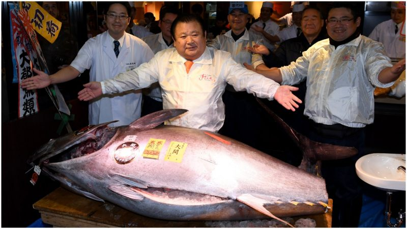 President of sushi restaurant chain Sushi-Zanmai, poses with a 212-kilogram bluefin tuna at his main restaurant near the Tsukiji fish market in Tokyo on January 5, 2017. TOSHIFUMI KITAMURA/AFP/Getty Images)