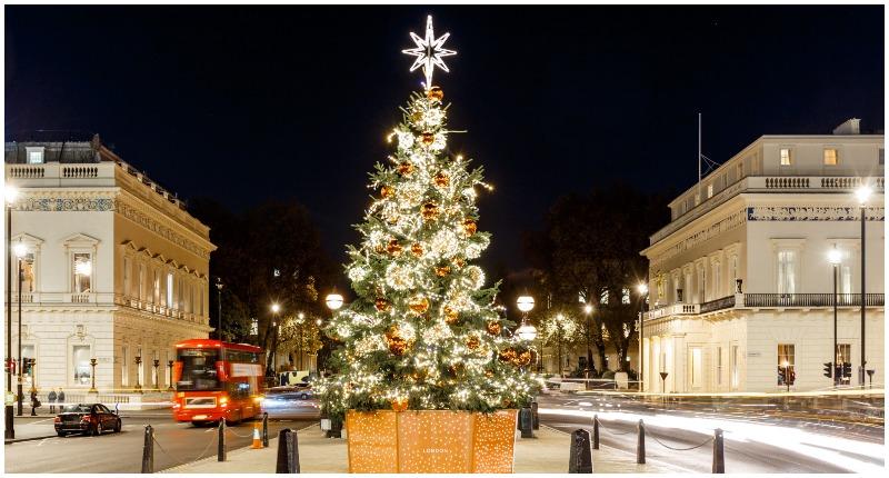 Christmas Tree at Waterloo Place, London.