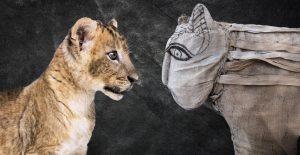 Lion mummy