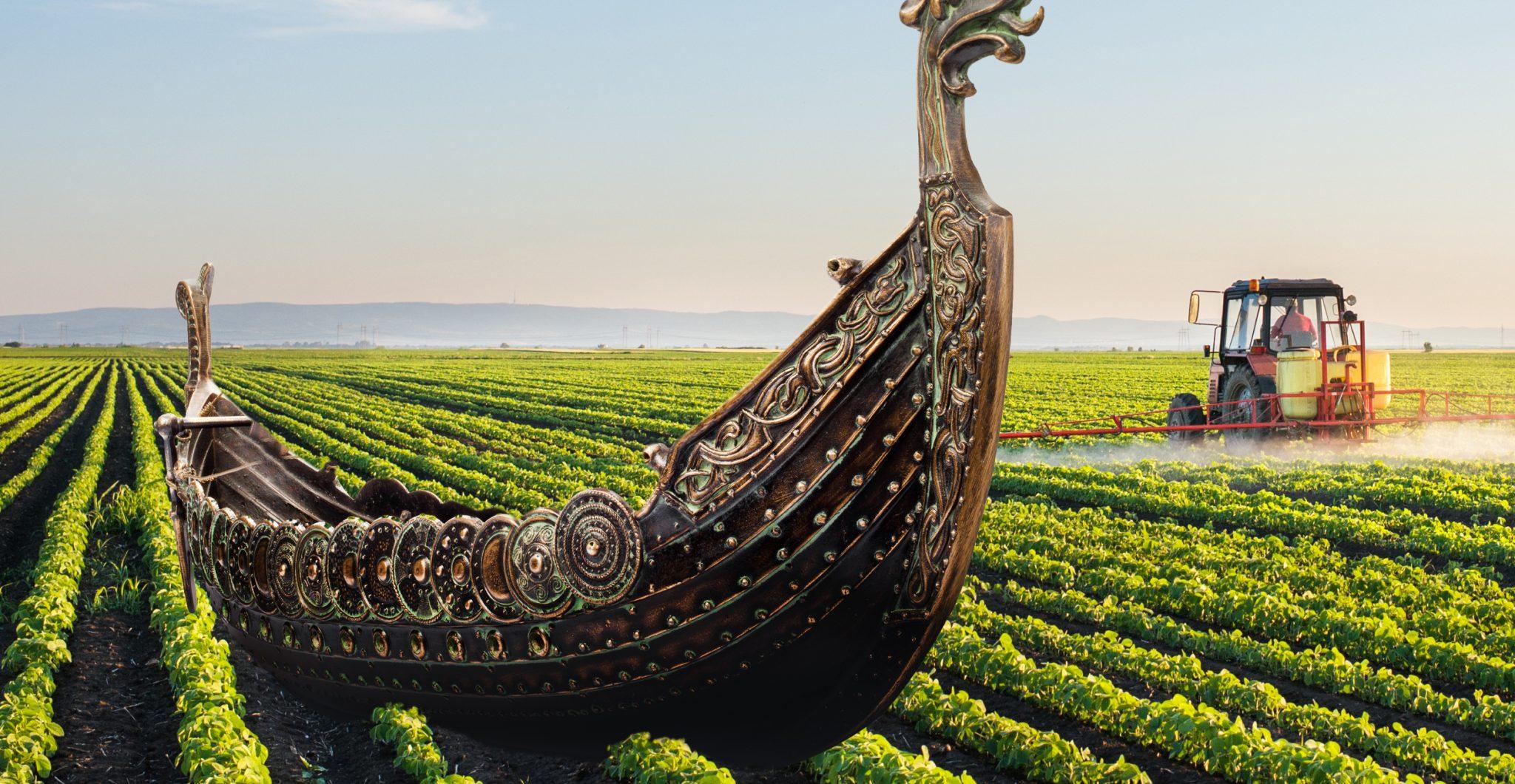 Viking ship in a farm
