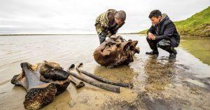 woolly mammoth siberian lake