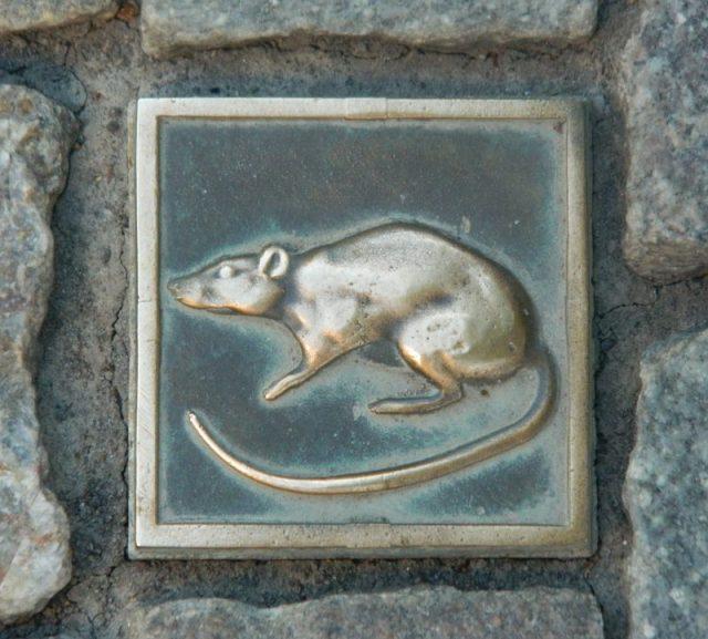 stone depicting a rat in Hamelin