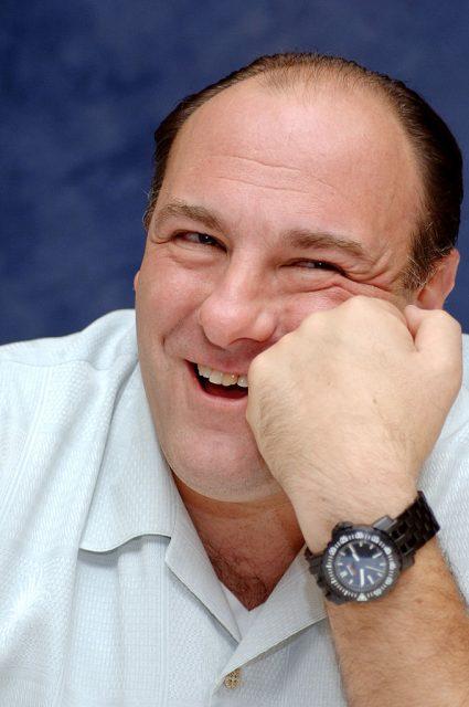 "James Gandolfini during ""The Sopranos"" Press Conference. (Photo Credit: Vera Anderson/WireImage)"